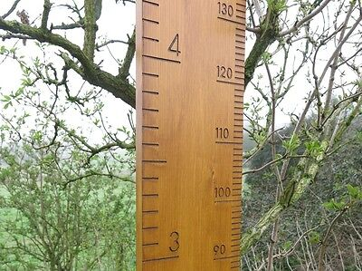 Quality Solid Wood Family Height and Growth Chart Ruler in Accoya for the garden