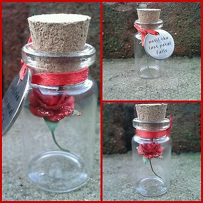 Beauty and the Beast Enchanted Rose Glass Bottle & Charm Disney Inspired