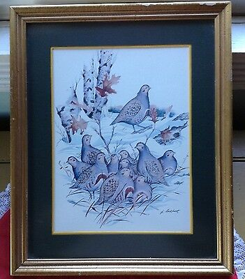 "Framed & Matted James Lockhart Print, ""Europan Partridge"" Wildlife Art, Bird"