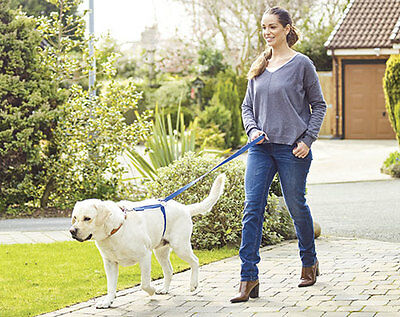 Instant Trainer Dog Lead - Turn Your Dog From A Puller To A Walker Instantly