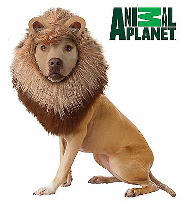 Animal Planet Lion - Dog Costume Extra Small (NEW & SEALED) Fancy Dress