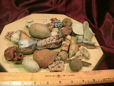 Bag of Dried seed pods-Decorative Bowl Filler Balls-browns & blues-free ship