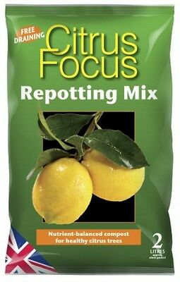 Citrus Focus Repotting Mix 2 Litre