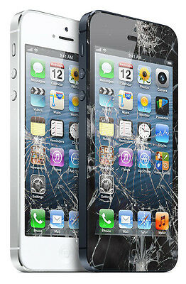 Iphone 5 S C Screen Glass Digitizer Lcd & Battery Replacement Repair Fit Service
