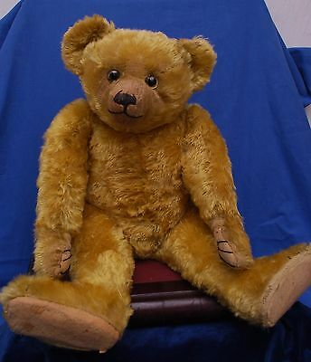 "Superb Condition 24"" Top Quality Golden Mohair 1920's Antique Farnell Teddy Bear"
