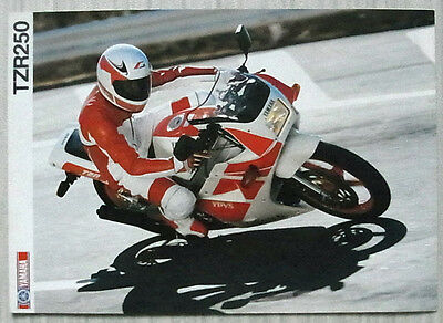 YAMAHA TZR250 MOTORCYCLE Sales Brochure c1989 #LIT-3MC-0107084-89E