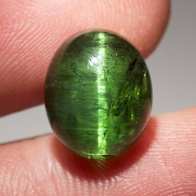 Cadingems 6.65Ct Green Tourmaline With Cat'S Eye Effect! 12.3X10.1Mm Cabochon