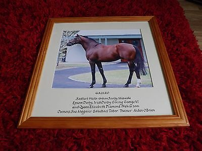 Galileo 36cm x 36cm Framed Photo Coolmore 3 of 3 Horseracing