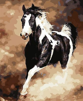 16X20'' Acrylic DIY Paint By Number kit Digital Oil Painting Horse SPA637