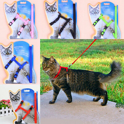 Animal Walking Lead Leash Safety Collar Adjustable Nylon Strap Rope for Pet Cat