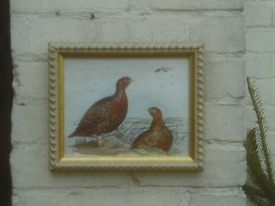 Vintage C.1980s/90s Framed original Watercolour painting of Grouse Birds -signed