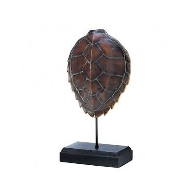 Turtle Shell Taxidermy Tortoise Statue Collectible Fossil Skeletal Display Decor