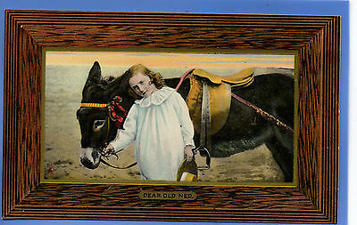 Old Vintage Tuck Postcard Pretty Young Girl With Donkey Dear Old Ned Children