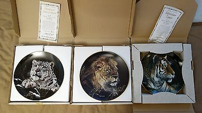 Natures Majestic Cats Collector Series - Hamilton set of three collectors plates