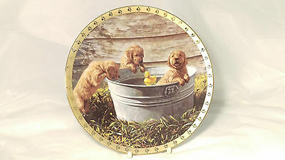 The Hamilton Collection The Waters Fine! A World of Puppy Adventures Plate