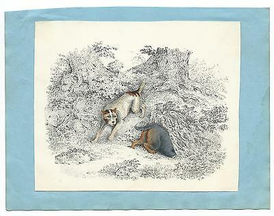HAND COLOURED PRINT, HUNTING DOGS, c.1840