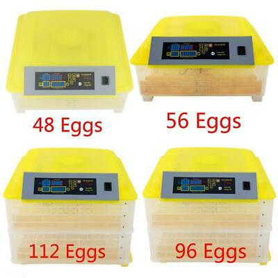 48/56/96/112 Digital Egg Incubator Hatcher Temperature Control Automatic Turning