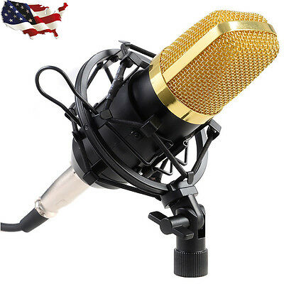 Professional Audio Condenser Mic Microphone Studio Sound Recording Shock Mount