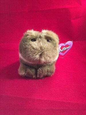 Lilly The Frog Puffkin Stuffed Animal New