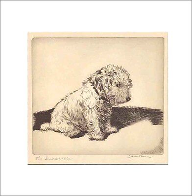 THE INCONSOLABLE DOG Print 1935 by Diana Thorne SEALYHAM TERRIER White Mat