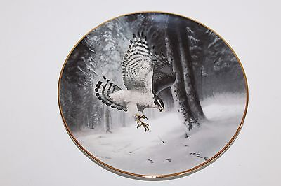 Bradex NORTHERN GOSHAWK Charles Frace Soaring Majesty Collectors Plate NEW