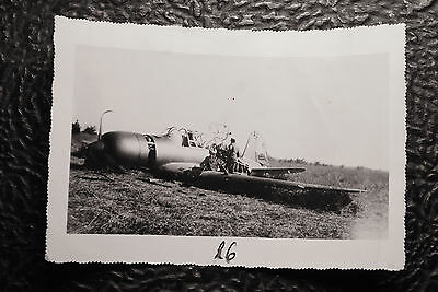 WW2 German Original Photo ( Fighter Aircraft Downed )