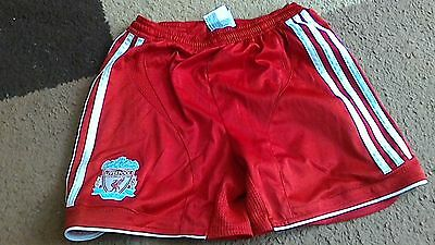 """Boys Liverpool Football Club Adidas Climacool Shorts,24"""",excellent Condition"""