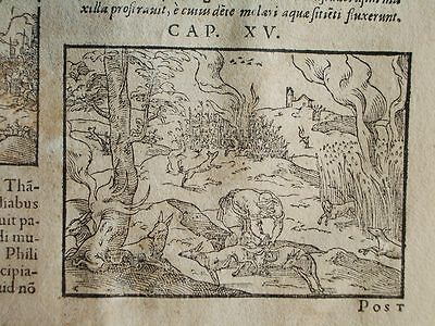 1540C-Sheet Bible Post-Incunable. 3 Engraving Religion.printed Germany.original