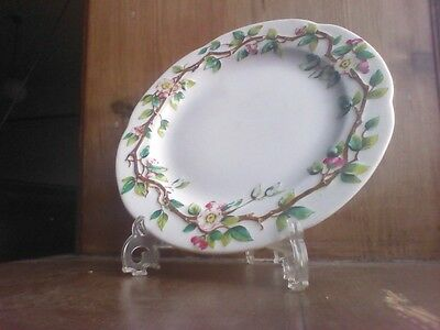 Antique Victorian Royal Worcester Scalloped Edge Plate 1899