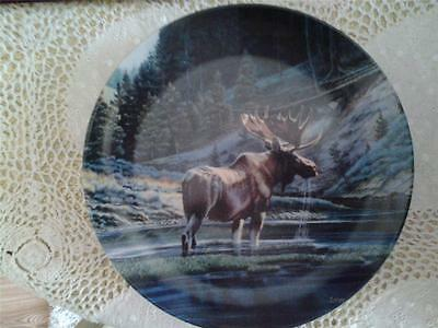 Dominion China The Moose Plate Paul Krapf Wild And Free Canada's Big Game