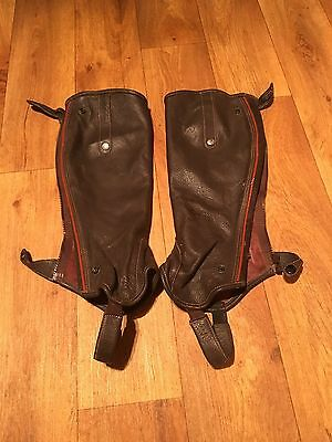 Mark Todd Ladies Brown Large Short Half Chaps