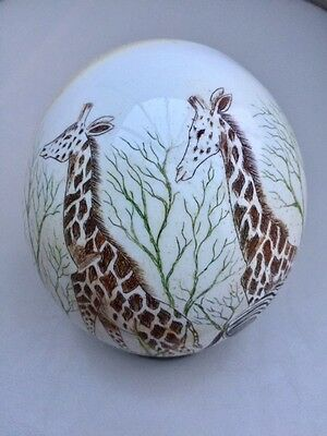 AFRICAN OSTRICH EGG SIGNED BY NYATHI (USED) FOR AUCTION (without Reserve)
