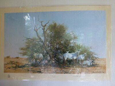 David Shepherd Signed Limited Edition Print Arabian Oryx Published In 1980