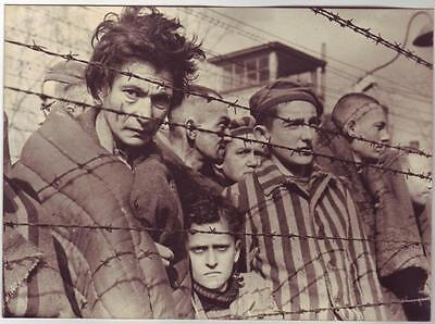 Wwii Press Photo: Auschwitz Concentration Camp Survivors, Poland February 1945