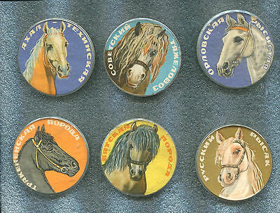 Russia HORSES 6 Large Pin Back Badge Button
