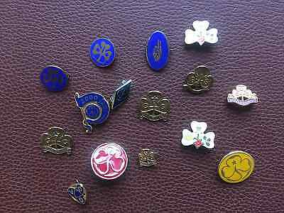 15 x Assorted Girl Guides Badges