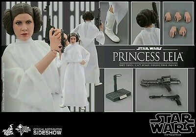 Hot Toys - Star Wars : Princess Leia. Brand New 1/6 Scale Figure