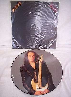 """Def Leppard, Have You Ever Needed Someone So Bad,1992,12"""" Picture Disc,ex Cond"""