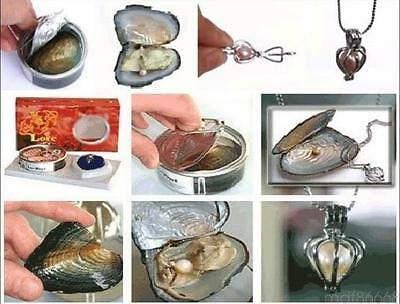 Hot Wholesale 4X different pendants Oyster Wish Pearl Necklace Gift set box