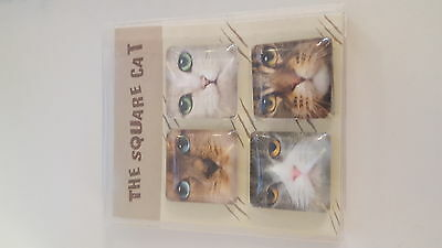cat fridge magnet NEW in box