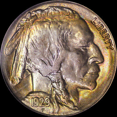 1929 S Buffalo Nickel Pcgs Ms 64 Ogh Cac Toned