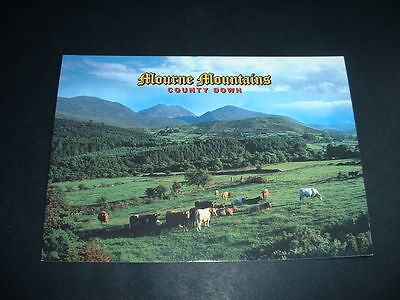 NORTHERN IRELAND MOURNE MOUNTAINS POSTCARD Co DOWN