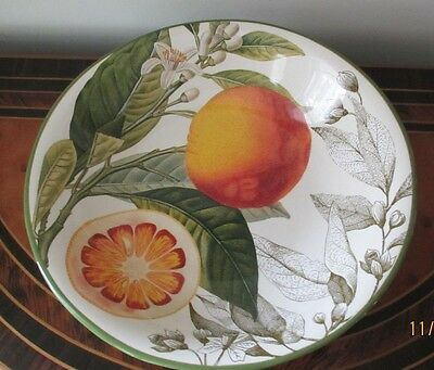 "Williams Sonoma Large 14"" Pasta/Salad Bowl Citrus EX. Co.No Signs of Use"