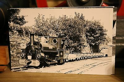 Narrow Gauge Railway Photo Hunslet Blanche Penrhyn Railway Wales 1956 With Train