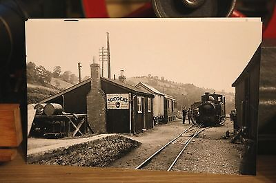 Narrow Gauge Railway Photo Welshpool & Llanfair Light Railway 1948