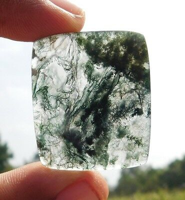 49.1 Cts Rarest 100% Natural Green Moss Agate 36X30X4 Mm  Loose Cab Gemstone