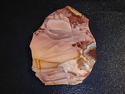 "Willow Creek Jasper slab -   5 1/4 "" x   4  ""--rough--cabbing--display"