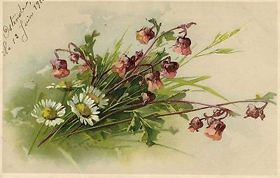 Catherine Klein BEAUTIFUL FLOWERS  artist signed postcard 1911