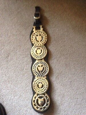 Antique  Shield / Tulip  Brasses on a good leather Strap.