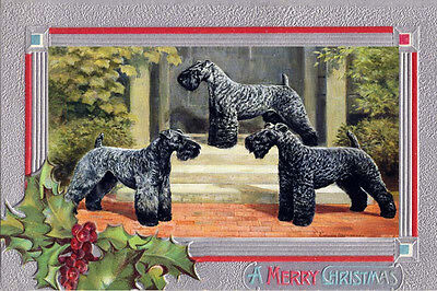 Kerry Blue Terrier Dogs by Edwin Megargee # 3 ~ LARGE New Christmas Note Cards